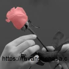 نزدیک ترین1 مشاور آرامش درمانی اقدسیه 02126851543