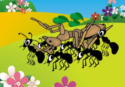 قصه ی زیبای ماشین مورچهها خراب شده
