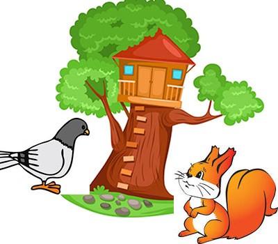 قصه ی جالب کبوتر و سنجاب